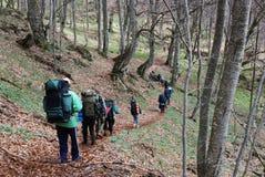 горы hikers Стоковые Изображения