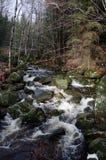 Горы Jizera, чехия Стоковое Изображение RF