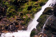 горы klein drakenstein плащи-накидк Африки приближают к водопаду съемки paarl южному западному Стоковые Фотографии RF