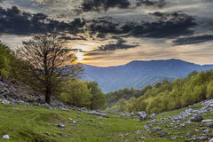 Горы Mehedinti стоковое изображение