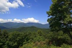 Горы NC в летнем времени стоковые фотографии rf
