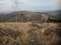 Горы Opawskie обнажанные деревьев стоковое фото rf