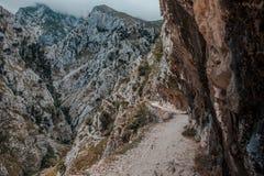 Горы Picos de Европы, на трассе забот Астурия, Стоковая Фотография RF