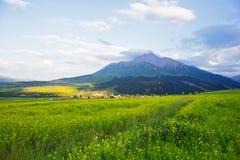 Горы Qilian в провинции Цинхая стоковые фотографии rf