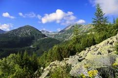 Горы Retezat Стоковое Изображение RF