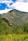 Горы Sayan Стоковое Изображение RF