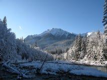 Горы Tatra в Польше и Словакии Стоковая Фотография