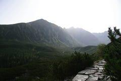 Горы Tatra Стоковые Изображения
