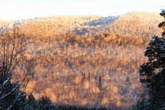 Горы Ural в выравниваясь свете стоковое фото rf