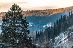 Горы Ural в выравниваясь свете стоковые фотографии rf
