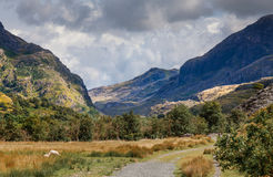 Горы Welsh Стоковое фото RF
