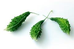 Горькая тыква с листьями на белой предпосылке стоковая фотография rf