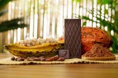 Горький шоколадный батончик, сырцовый плодоовощ какао, фасоли какао, масло какао на деревянном столе Стоковое Фото
