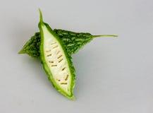 горькmNs gourd стоковое изображение