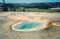 горячая весна yellowstone стоковые изображения