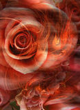 горячая влюбленность запальчиво Стоковое фото RF