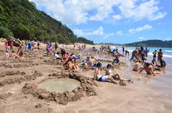 Горячая вода Bech - Новая Зеландия Стоковые Изображения RF