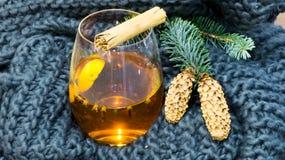горячая зима чая Стоковые Фотографии RF