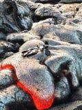 горячая лава Стоковые Изображения