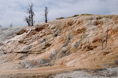 горячая мамонтовая весна yellowstone стоковые изображения rf