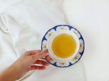 Горячая чашка зеленого чая в белой декоративной чашке фарфора держала вручную на белой предпосылке Плоское положение Взгляд сверх Стоковая Фотография RF