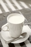 Горячая чашка молока Стоковое Фото