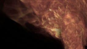 горячее горение огня 4k, свирль циклона торнадо факела, абстрактная энергия дыма частицы сток-видео