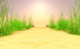 горячее лето Стоковое фото RF
