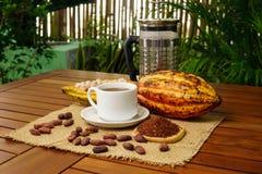 Горячее заваренное питье какао, сырцовый плодоовощ какао, фасоли какао, nibs Стоковое Фото
