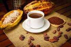 Горячее заваренное питье какао, сырцовый плодоовощ какао, фасоли какао, nibs Стоковое Изображение