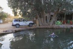 Горячее озеро на пустыне, Тунисе стоковое фото rf