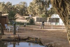 Горячее озеро на пустыне, Тунисе стоковые изображения