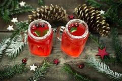 Горячее питье зимы от клюквы Питье рождества Стоковые Изображения RF