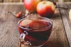 Горячее питье с яблочным сидром, отрезанным плодоовощ и ручкой циннамона Стоковые Фотографии RF