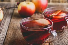 Горячее питье с яблочным сидром, отрезанным плодоовощ и ручкой циннамона Стоковые Фото