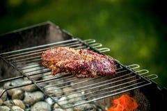 Горячее пряное приготовление на гриле стейка на барбекю лета над горячими гарнированными углями Стоковое фото RF