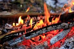 горячее пламя лагерного костера Стоковые Фотографии RF