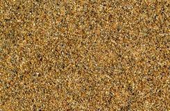Горячее фото песка пляжа для предпосылки Тропический пляж с золотым песком Стоковые Изображения