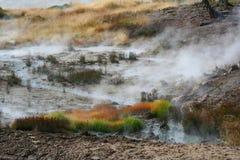 горячее yellowston бака национального парка грязи Стоковые Фотографии RF