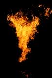 горяче Стоковое Фото