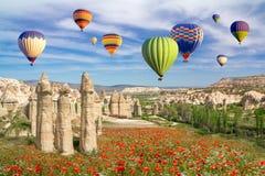 Горячие воздушные шары летая над полем маков и ландшафта утеса в долине любов на Cappadocia стоковые фотографии rf
