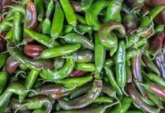 Горячие зеленые перцы красных чилей продали на рынке города стоковое фото