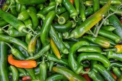 Горячие зеленые перцы чилей продали на рынке города стоковое фото