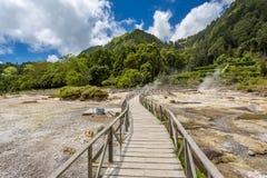 Горячие источники восходящего потока теплого воздуха Lagoa das Furnas Geo стоковое фото rf