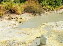 Горячие источники озера Furnas Sao Мигель, Азорские островы стоковая фотография rf