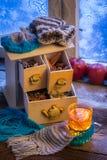Горячие лист чая на морозном вечере Стоковые Фото