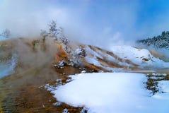 горячие мамонтовые террасы весны Стоковые Фотографии RF