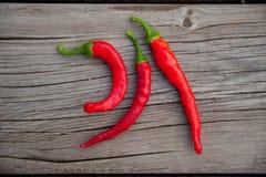 горячие перцы красные Стоковые Фотографии RF
