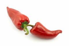 горячие перцы красные Стоковая Фотография