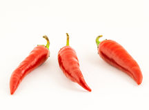 горячие перцы Стоковое фото RF